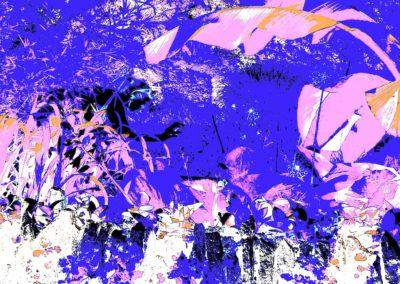 "Steven Levine, Swim, Digital Photograph, 15"" x 22"", $295"