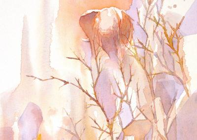 "Alison Nicholls, Elephants Love Oranges, Acrylic on canvas, 20""x16"", $1,800"